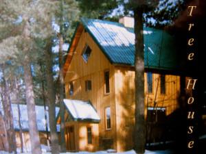 Tree house -2