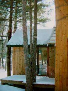Tree house -4